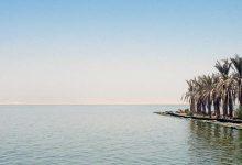 صورة ماذا فعلت البيئة لحماية بحيرة قارون ؟
